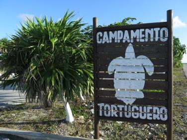 camp-tortuguero