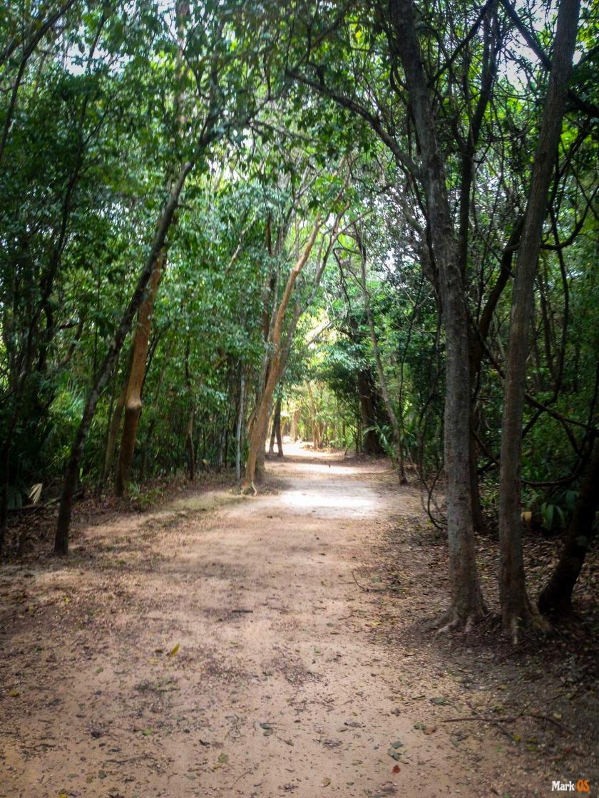 Camino Zona Arqueológica Coba